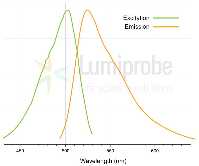 Anregungs- und Emissionsspektren von Pico488 gebunden an DNA