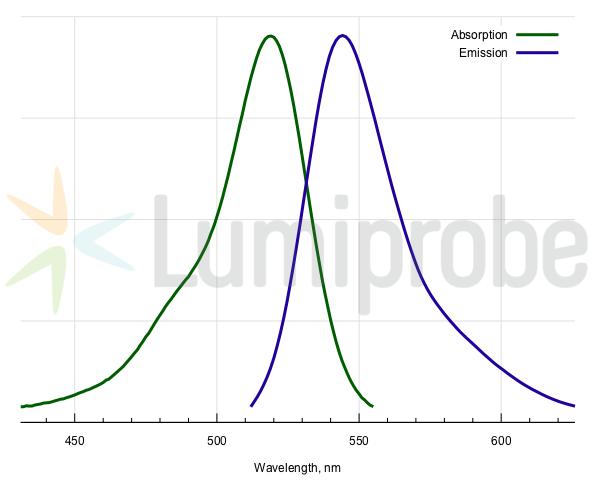 Спектры поглощения и эмиссии для 5-R6G