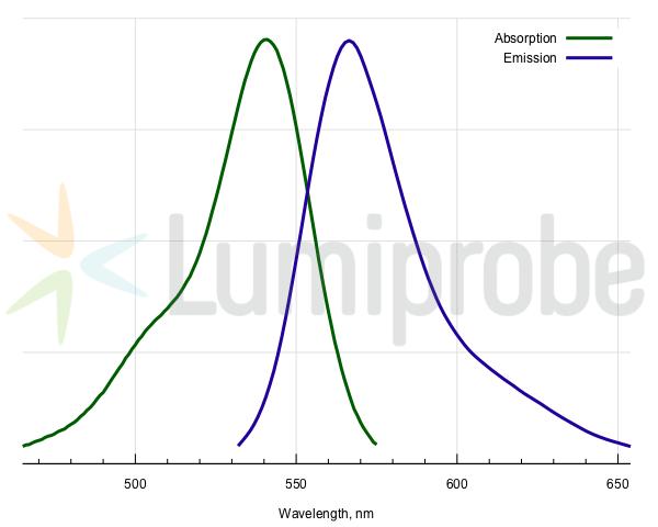 Absorptions- und Emissionsspektren von 5-TAMRA