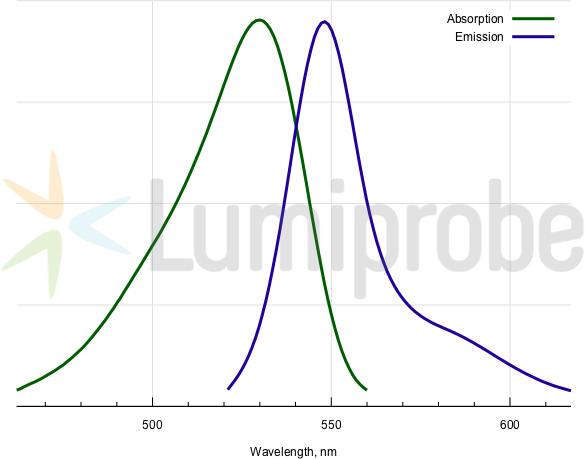 Absorptions- und Emissionsspektren von BDP R6G