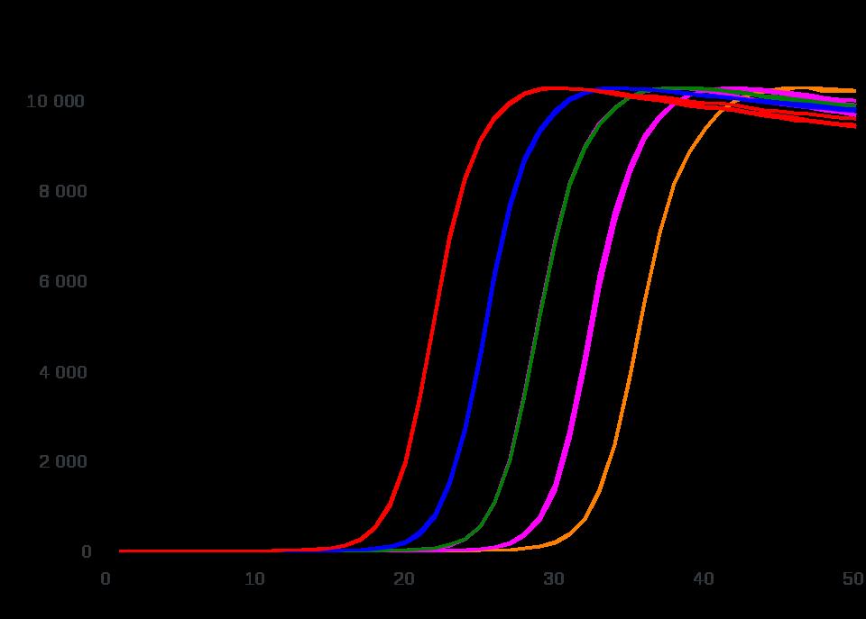 Echtzeit-PCR